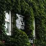 Black Swan Hotel rooms price check Best Prices and Availability
